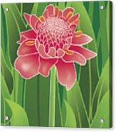 Tropical Flower Acrylic Print