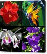 Tropical Flowers Multiples Acrylic Print