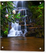 Tropical Garden Acrylic Print