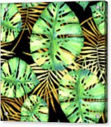 Tropical Haze Noir Variegated Monstera Leaves, Golden Palm Fronds On Black Acrylic Print