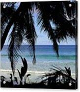 Tropical Hole Acrylic Print