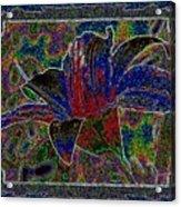 Tropical Lily 5 Acrylic Print