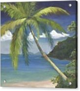 Tropical Palm Acrylic Print