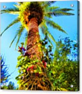Tropical Palm Tree Painting Acrylic Print