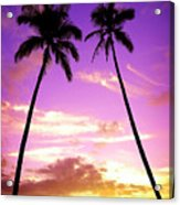 Tropical Palm Trees Silhouette Sunset Or Sunrise Acrylic Print