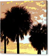 Tropical Palms Work Number Four Acrylic Print