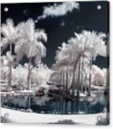 Tropical Paradise Infrared Acrylic Print
