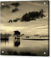 Tropical Peace Acrylic Print