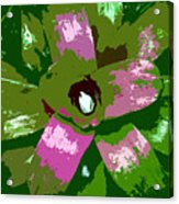 Tropical Plant Work Number 5 Acrylic Print
