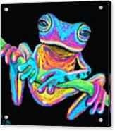 Tropical Rainbow Frog On A Vine Acrylic Print
