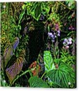 Tropical Rainforest Acrylic Print