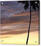 Tropical Silhouette Acrylic Print