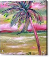 Tropical Sunset In Pink With Palm Tree Acrylic Print