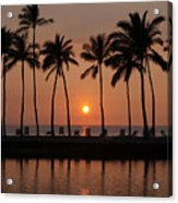 Tropical Sunset Silhouettes  Acrylic Print