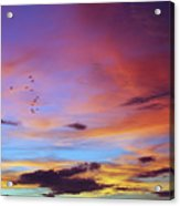 Tropical North Queensland Sunset Splendor  Acrylic Print