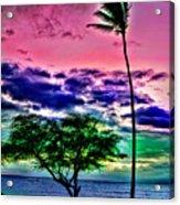 Tropical Trees Acrylic Print