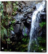Tropical Waterfall Acrylic Print