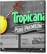 Tropicana Field Acrylic Print