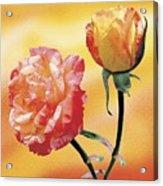 Tropicana Roses 2 Acrylic Print