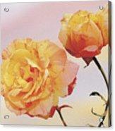 Tropicana Roses Acrylic Print