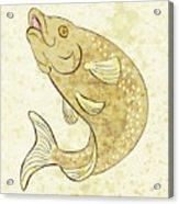 Trout Fish Jumping Acrylic Print by Aloysius Patrimonio