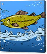 Trout Fish Swimming Underwater Acrylic Print by Aloysius Patrimonio