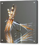Trout Fly 2 Acrylic Print