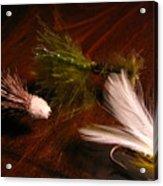 Trout Flys Acrylic Print