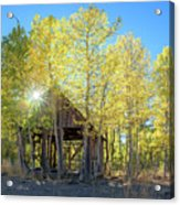 Truckee Shack Near Sunset During Early Autumn With Yellow And Green Leaves On The Trees Acrylic Print