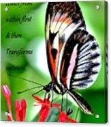 True Beauty Acrylic Print