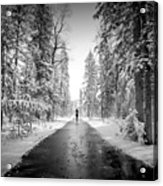 Trying To Escape The Snow Acrylic Print