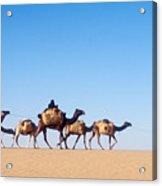 Tuareg Journey Across The Desert Acrylic Print