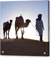 Tuareg Man With Camel Train, Sahara Desert, Morocc Acrylic Print by Peter Adams