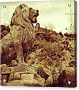 Tucson Lion Acrylic Print