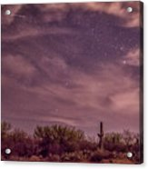 Tucson22 Acrylic Print