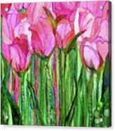 Tulip Bloomies 1 - Pink Acrylic Print
