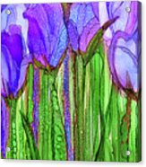 Tulip Bloomies 2 - Purple Acrylic Print