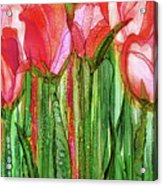 Tulip Bloomies 2 - Red Acrylic Print