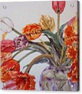 Tulip Bouquet - 12 Acrylic Print