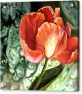 Tulip Dance Acrylic Print