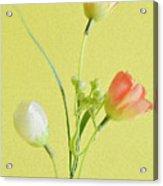 Tulip Family Acrylic Print
