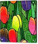 Tulip Glory Acrylic Print by Jim Harris