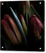 Tulip Grunge Acrylic Print