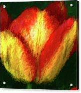 Tulip Painting Acrylic Print
