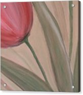 Tulip Series 2 Acrylic Print