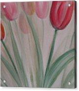 Tulip Series 5 Acrylic Print