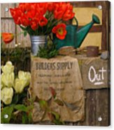 Tulip Town Acrylic Print