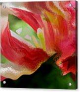 Tulip Wave And Ripple Acrylic Print