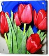 Tulipfest 1 Acrylic Print