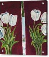 Tulips 11 And 12 Acrylic Print